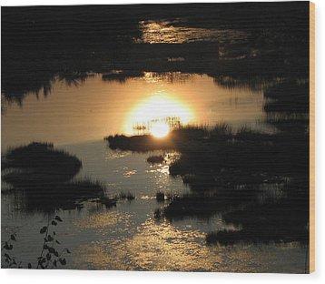 Reflections At Sunset Wood Print by Barbara Yearty