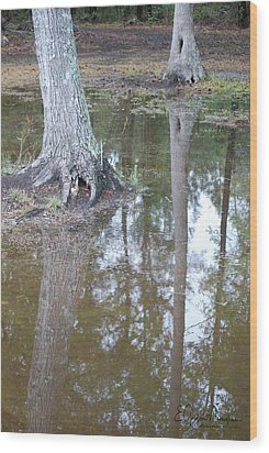 Reflections Wood Print by Gordon Mooneyhan