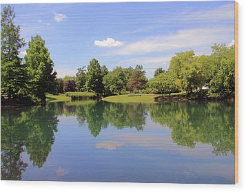 Reflections In A Pond Wood Print