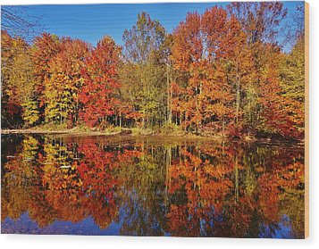 Reflections In Autumn Wood Print by Ed Sweeney