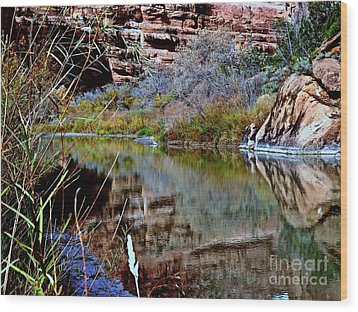Reflections In Desert River Canyon Wood Print by Annie Gibbons
