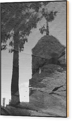 Reflections Wood Print by Julia Bridget Hayes