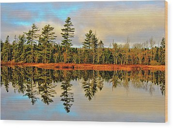 Reflections Wood Print by Kathleen Sartoris