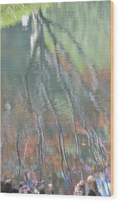 Reflections Wood Print by Linda Geiger