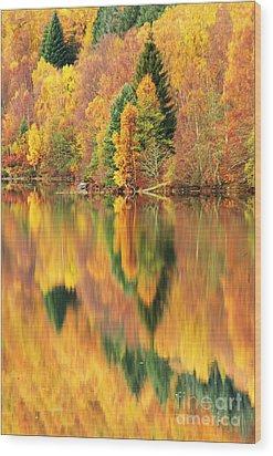 Reflections Loch Tummel Scotland Wood Print by George Hodlin