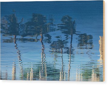Reflections Of Hawaii Wood Print by Susan Stone