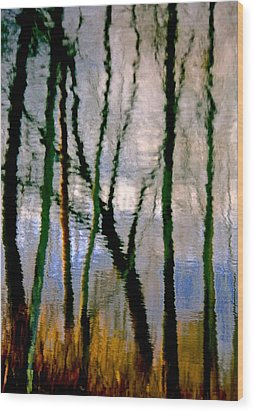Reflections Of The Forrest Wood Print by Gillis Cone