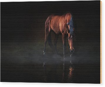 Reflections Of Wilma Wood Print by Debby Herold