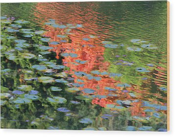 Reflections On A Lily Pond Wood Print
