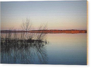 Reflections On Lake Jackson Tallahassee Wood Print