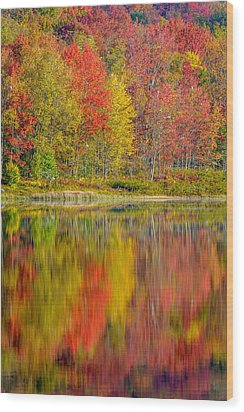 Canaan Valley West Virginia Reflections Wood Print by Rick Dunnuck