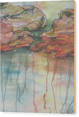 Reflections Wood Print by Sandy Tracey