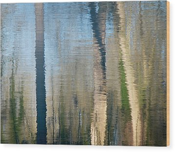 Wood Print featuring the photograph Reflet Rhodanien Pastel 2 by Marc Philippe Joly