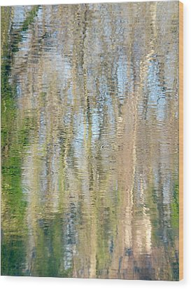 Wood Print featuring the photograph Reflet Rhodanien Pastel 3 by Marc Philippe Joly