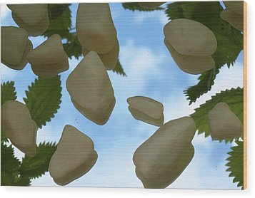 Reflexion Wood Print by Thomas Maes