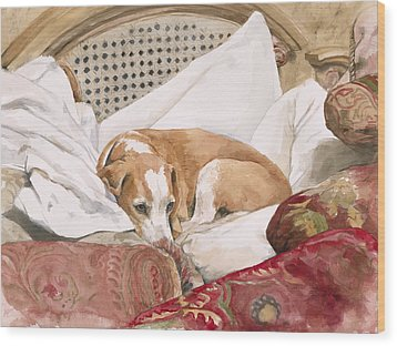 Regal Beagle Wood Print by Debra Jones
