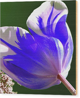 Reigning Tulips Wood Print by Christine Belt