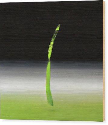 Relativity  Wood Print by Antonio Ortiz