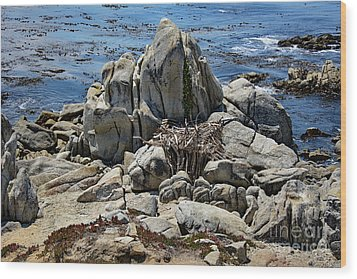 Wood Print featuring the photograph Remains Of Ancient Rocks At Carmel Point by Susan Wiedmann