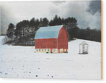 Wood Print featuring the photograph Rembering The Good Old Days by Julie Hamilton