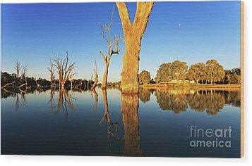 Renamrk Murray River South Australia Wood Print by Bill Robinson