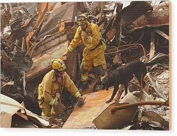 Rescue Workers From The California Task Wood Print by Everett