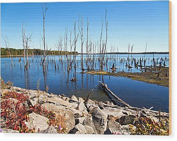 Wood Print featuring the photograph Reservoir by Angel Cher