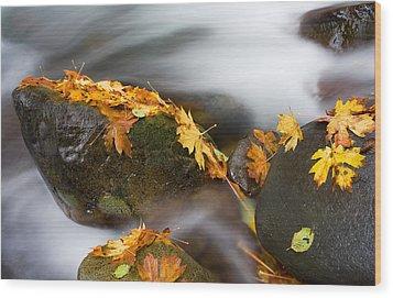 Respite Wood Print by Mike  Dawson