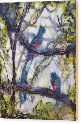Resplendent Quetzal #1 Wood Print