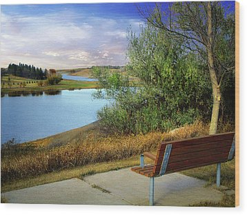 Rest Stop 2 Wood Print