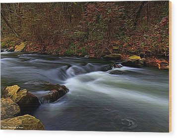 Resting By The Water Wood Print
