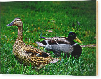 Wood Print featuring the photograph Resting Ducks by Mariola Bitner