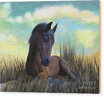 Wood Print featuring the painting Resting Foal by Sandra Bauser Digital Art