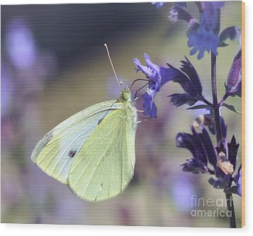 Wood Print featuring the photograph Resting In The Purple by Kerri Farley