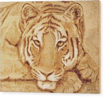 Resting Tiger Wood Print by Dale Loos Jr