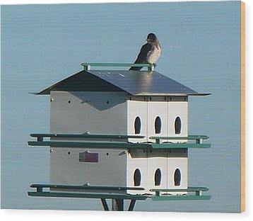 Return Of The Purple Martin Wood Print by Jerry Browning