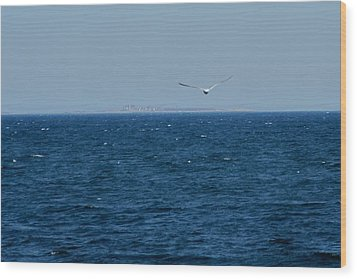 Wood Print featuring the digital art Return To The Isle Of Shoals by Barbara S Nickerson