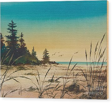 Return To The Shore Wood Print by James Williamson