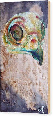 Revolution Burrowing Owl Wood Print by Christy  Freeman