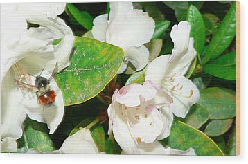 Wood Print featuring the photograph Rhododendron And Bee by Larry Keahey