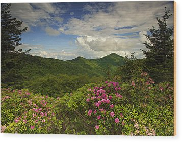 Rhododendrons On The Blue Ridge Parkway Wood Print