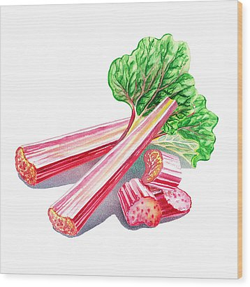 Wood Print featuring the painting Rhubarb Stalks by Irina Sztukowski