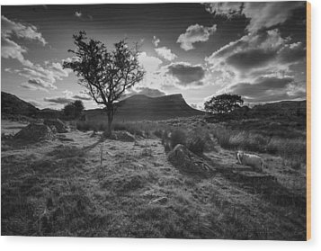 Wood Print featuring the photograph Rhyd Ddu, Snowdonia, Wales by Richard Wiggins