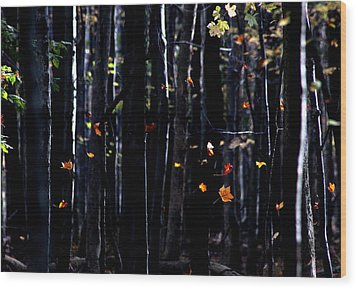 Rhythm Of Leaves Falling Wood Print by Bruce Patrick Smith