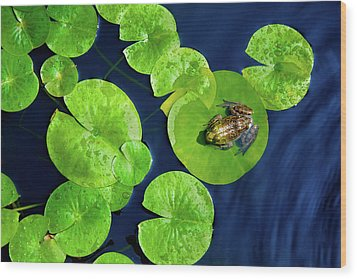 Ribbit Wood Print by Greg Fortier