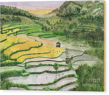 Ricefield Terrace II Wood Print by Melly Terpening