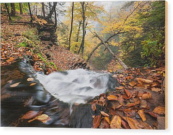 Ricketts Glen State Park Ganoga Falls Allegheny Mountains Pennsylvania Wood Print by Mark VanDyke