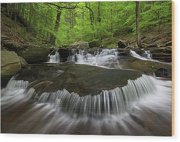 Ricketts Glen State Park Pennsylvania Wood Print by Mark VanDyke