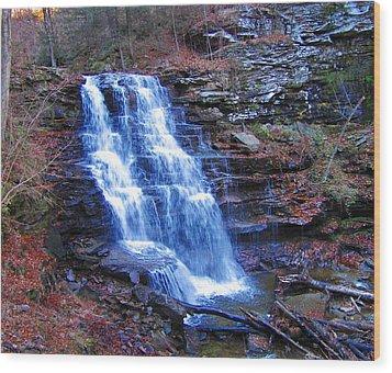 Ricketts Glen Waterfall 3941  Wood Print