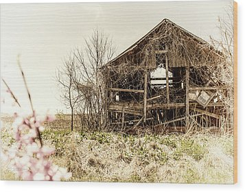 Rickety Shack Wood Print by Pamela Williams